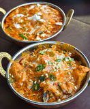 Indian Paneer Stock Image