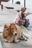 Indian people and cow sits on the ghat along the Ganges river. Rishikesh , India Stock Images