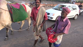 Indian people performing with sacred animal cow  and drum in street road stock video
