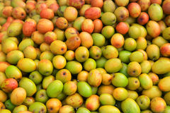 Indian plum royalty free stock photos