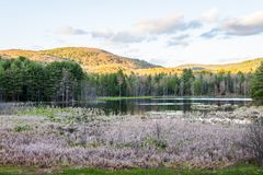 Indian Pond in Madame Sherri Forest in New Hampshire.  Stock Photo