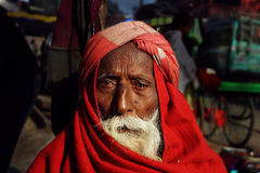 Indian Portrait Royalty Free Stock Photo