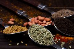 Indian powder . royalty free stock photos