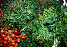 Indian radish chilly,  tomato, spinach Royalty Free Stock Images