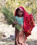 Indian Rural Girl Royalty Free Stock Photo