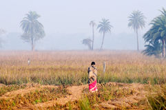 Indian rural woman standing in the mist Royalty Free Stock Image