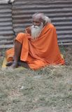 Indian Sadhu royalty free stock image
