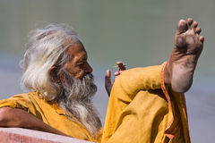 Indian sadhu (holy man) Stock Photography