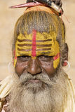 Indian sadhu (holy man) Stock Image