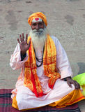 Indian Sadhu Royalty Free Stock Photo