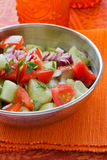 Indian Salad Royalty Free Stock Photography