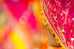 Indian Sari. Details of an Indian women's dress Royalty Free Stock Photo