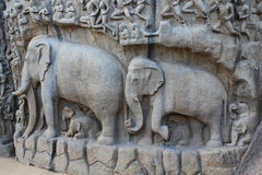 Indian sculpture art, Mahabalipuram Royalty Free Stock Photo
