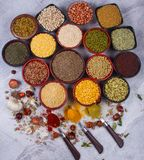 Indian seed royalty free stock photos