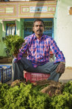 Indian seller. KAMALAPURAM, INDIA - 02 FABRUARY 2015: Indian man selling vegetables on a market close to Hampi Royalty Free Stock Photo