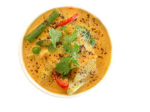 Indian series. Series of indian dishes - yellow curry Stock Image