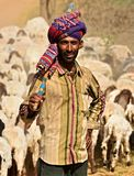 Indian Shephard with his sheep and cattle herd Royalty Free Stock Photos