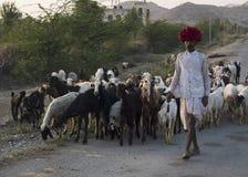Indian shepherd. Stock Images