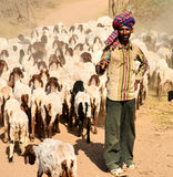 Indian shepherd Royalty Free Stock Photos