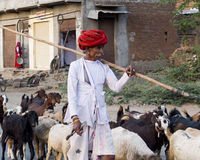 Indian shepherd in a village. Stock Photo