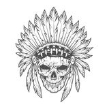 Indian skull with feathers. Vector art. Stock Images
