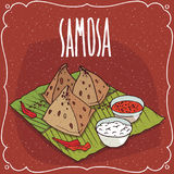 Indian snack Samosa with sauce and curd cheese Stock Photography