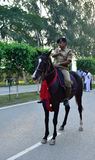Indian Soldier on the Horse Stock Photography