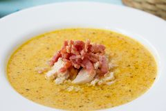 Indian soup with curry and bacon. Indian soup (Potage Mulligatawny) with curry and bacon in white soup bowl Stock Photography