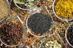 Indian Spice 03 Royalty Free Stock Photography
