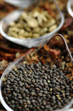 Indian Spice 06 Stock Image