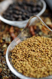 Indian Spice 07 Stock Image
