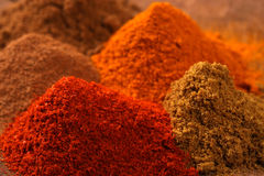 Indian spice. Close up of Indian spice Stock Images