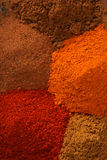 Indian spice Royalty Free Stock Image