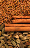 Indian spice Royalty Free Stock Photography