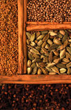 Indian spice Royalty Free Stock Images