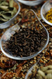 Indian Spice 11 Royalty Free Stock Image