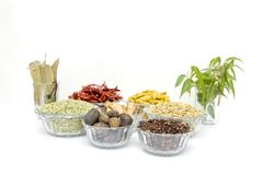 Indian spice. Image of ayurvedic medicine & spice royalty free stock photos