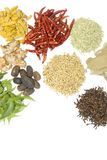 Indian spice. Image of ayurvedic medicine & spice royalty free stock images