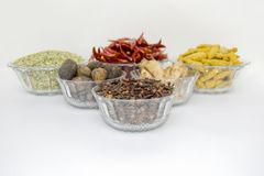 Indian spice. Spice in the Bowl On white background Royalty Free Stock Photo