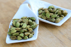 Indian Spice-cardamom Stock Image
