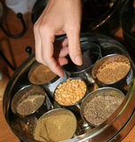 Indian Spice Tray Royalty Free Stock Photo