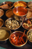 Indian spices. Different tipes of indian spices royalty free stock image