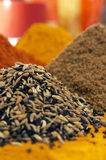 Indian spices. Different tipes of indian spices stock photos