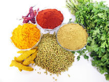 Indian Spices. Main indian spices used in day to day cooking in every indian home Stock Photos