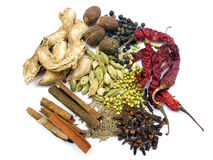 Indian Spices. Variety of spices used in everyday cooking in indian kitchen Stock Image