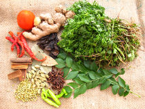 Indian Spices. A mixture of variety of indian species on jute background Stock Photo