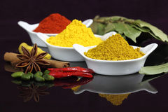 Indian spices. Spices and herbs in white ceramic bowls. Food and cuisine ingredients. Colorful natural additives Royalty Free Stock Photos