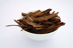 Indian spices 5 cassia. Indian Cinnamon sticks (cassia bark) in a white bowl royalty free stock photo