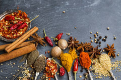 Indian spices with anise, cinnamon, coriander,cumin, chili,peppe Stock Photography