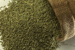 Indian spices-Aniseed. Stock Image